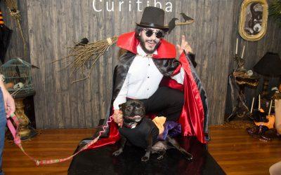 Pets fantasiados de Drácula, bruxa e Viação do Terror vencem concurso de Halloween