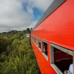 Passeio de trem Curitiba-Morretes têm 50% de desconto em maio