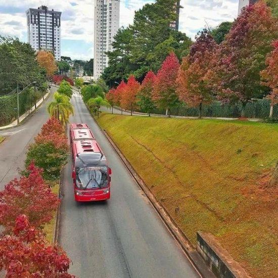 Ecoville_Curitiba_Divulgação